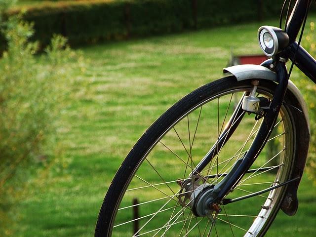 Taryfikator mandatów dla rowerzysty