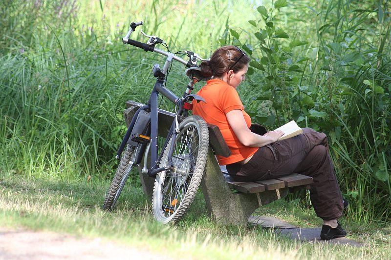 Wrocław: być może któryś z tych rowerów jest twój