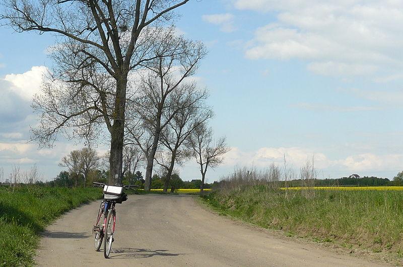 Odcinek południowy Transwielkopolskiej Trasy Rowerowej – zobacz mapę