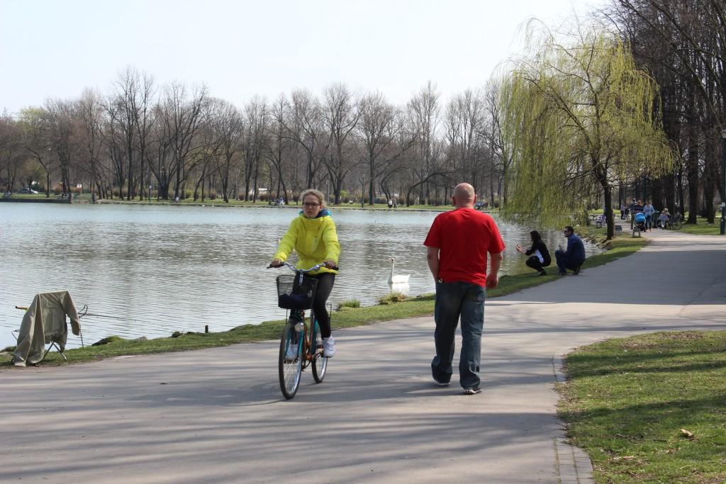rower nowa huta